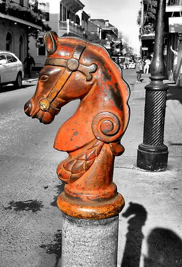 Horse Head by rosaliemcm