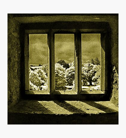 A View From Blarney Castle Photographic Print