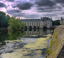 Reflecting On Chenonceau ( 11 ) by Larry Lingard-Davis