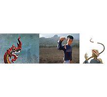 Lizards of Laos Photographic Print