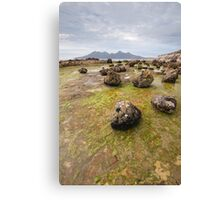 Freaky Geology Canvas Print