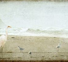 Birds on the Beach by Margi