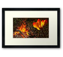 Fire Glow Framed Print