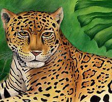 Jaguar (Panthera onca) by Tamara Clark