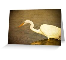 Early Morning Hunt Greeting Card