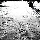last night snow by Nikolay Semyonov