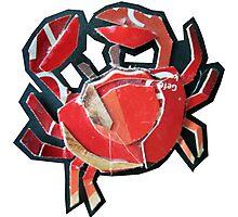 tiny crab Photographic Print