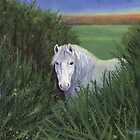 New Forest Pony by Tamara Clark
