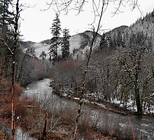 Snow On The Calapooia by Charles & Patricia   Harkins ~ Picture Oregon
