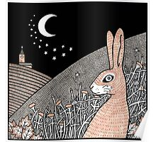Star Gazing Hare Poster