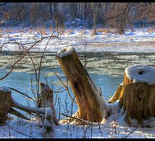 By the river by greyrose
