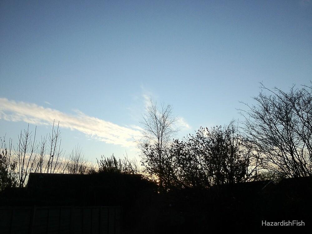 Nice bit o' sky. by HazardishFish