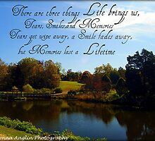 Life by Donna Anglin Husband