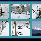 Winter Collage by Chappy