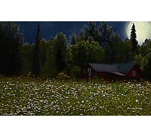 One Starry Summer Night Photographic Print