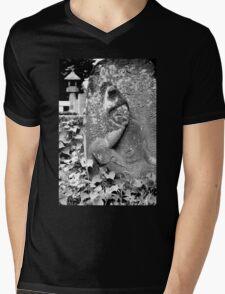 Tranquility  Mens V-Neck T-Shirt