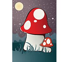 Magic mushrooms Photographic Print