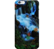 Willow River Falls 4 iPhone Case/Skin
