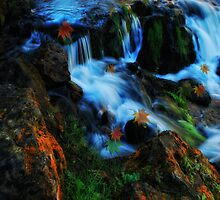 Willow River Falls 4 by Gypsykiss