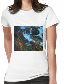 Willow River Falls 4 Womens Fitted T-Shirt