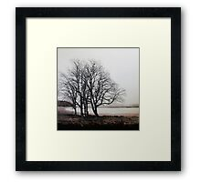 Recycling life Framed Print