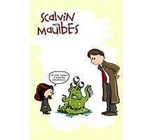 Scalvin and Maulbes Photographic Print