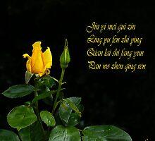 Jin yi mei gui zin by Gilberte