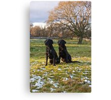 A fine pair Canvas Print