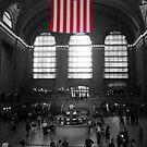 Grand Central by dgscotland