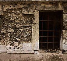 Mayan History by MichelleFaye