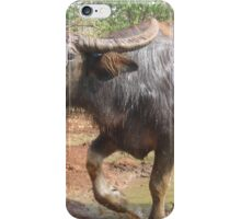 Special Water Buffalo iPhone Case/Skin