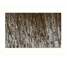 Marsh Grass Reflections 2 Art Print