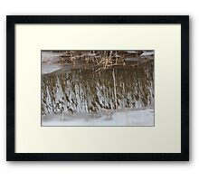 Marsh Grass Reflections with Ice 3 Framed Print