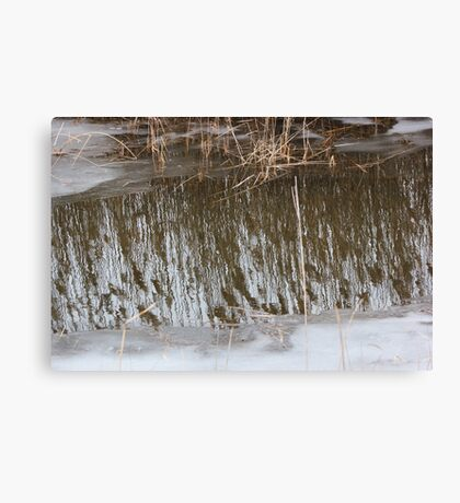Marsh Grass Reflections with Ice 3 Canvas Print