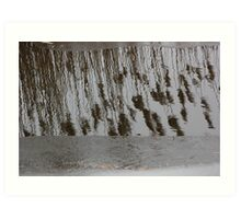 Marsh Grass Reflections with Ice 14 Art Print