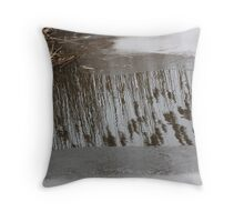 Marsh Grass Reflections with Ice 17 Throw Pillow
