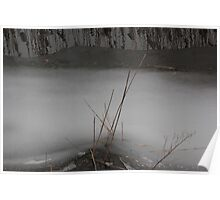Marsh Grass in Ice Poster