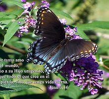 Juan 3:16 Porque tanto amo Dios al mundo by WalnutHill
