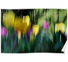 Tulips with movement Poster