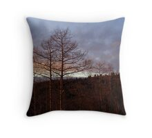 Leafless silhouette at sunset Throw Pillow