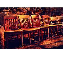 Sit!! Photographic Print