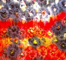 Tie-Dye by edpeny