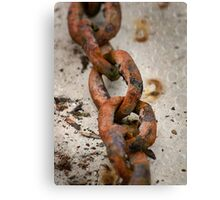 Flaky Links Canvas Print