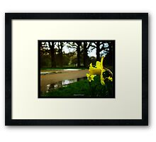 tears of nature Framed Print
