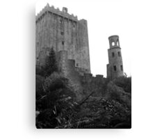 Blarney Castle Co Cork, Ireland.  Canvas Print