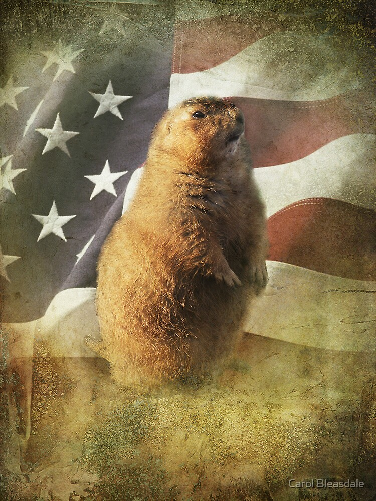 Patriot by Carol Bleasdale