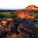Ubir, Kakadu in the late afternoon. by Bill  Robinson