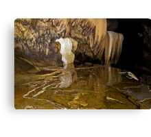 Reflections in a cave pool, Thailand Canvas Print