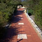 North Head Manly - The Walk by miroslava