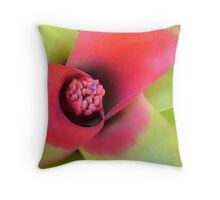 Browsing for a hot seat? Throw Pillow